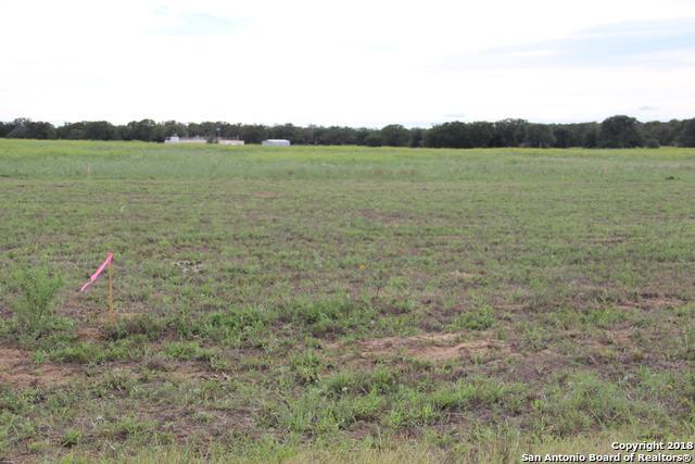 106 Las Palomas Dr, La Vernia, TX 78121 (MLS #1347702) :: Alexis Weigand Real Estate Group