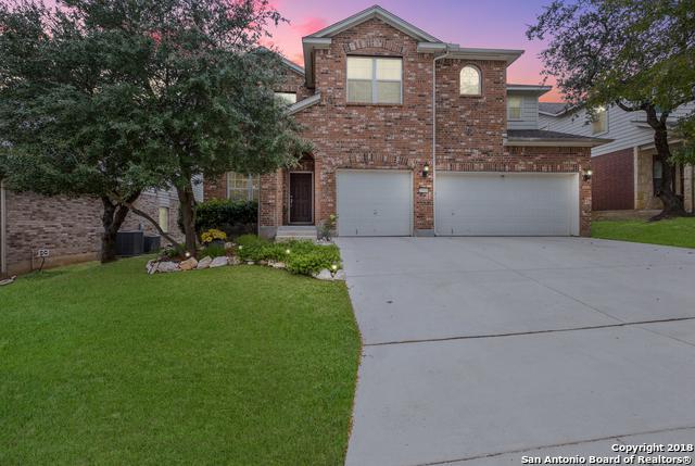 25610 Thomas Oaks, San Antonio, TX 78261 (MLS #1347713) :: Alexis Weigand Real Estate Group