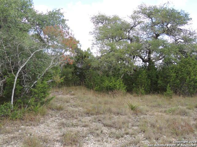 TBD North Loop, Blanco, TX 78606 (MLS #1347760) :: Alexis Weigand Real Estate Group
