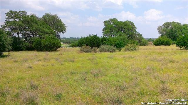 102 Steve Baker, Blanco, TX 78606 (MLS #1347805) :: Exquisite Properties, LLC