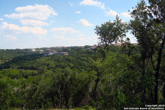 8530 Woodpecker Way, San Antonio, TX 78256 (MLS #1347947) :: Exquisite Properties, LLC