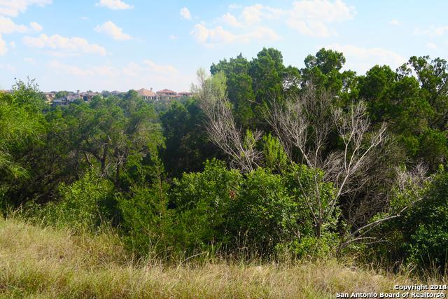 8526 Woodpecker Way, San Antonio, TX 78256 (MLS #1347948) :: Exquisite Properties, LLC