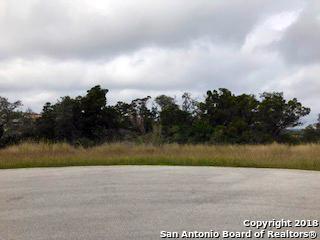 8538 Woodpecker Way, San Antonio, TX 78256 (MLS #1347952) :: Exquisite Properties, LLC