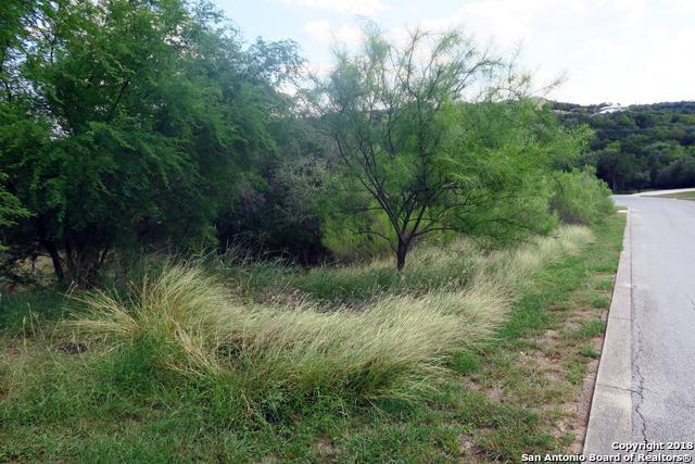 20714 Blue Quail Run, San Antonio, TX 78256 (MLS #1347962) :: Exquisite Properties, LLC