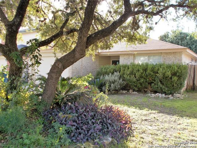 1007 Bobcat Creek, San Antonio, TX 78251 (MLS #1348055) :: Alexis Weigand Real Estate Group