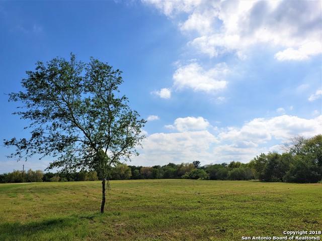 00 Buckeye Knoll, George West, TX 78022 (MLS #1348122) :: Erin Caraway Group
