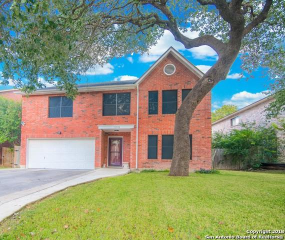 11118 Grey Park Dr, San Antonio, TX 78249 (MLS #1348223) :: Alexis Weigand Real Estate Group