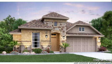 22812 Carriage Bush, San Antonio, TX 78261 (MLS #1348273) :: The Suzanne Kuntz Real Estate Team
