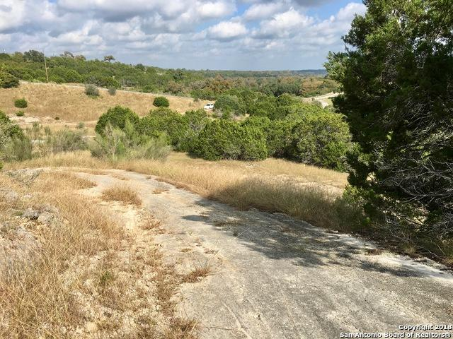 119 Ridge Pl, Boerne, TX 78006 (MLS #1348611) :: NewHomePrograms.com LLC