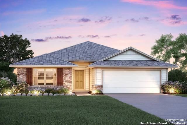 10414 Francisco Way, Converse, TX 78109 (MLS #1348653) :: Exquisite Properties, LLC