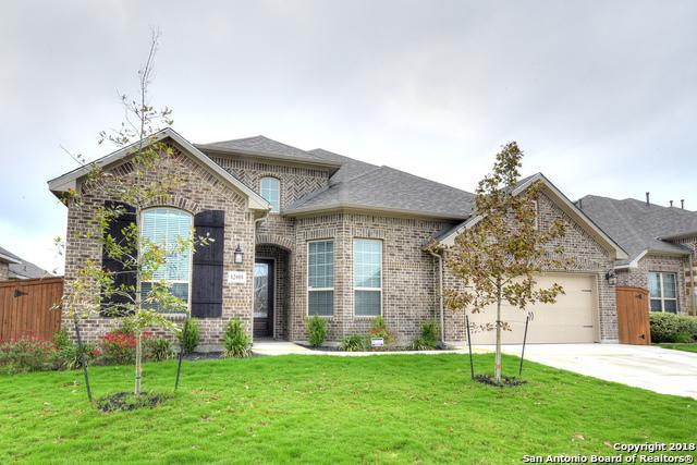 12018 White River Dr, San Antonio, TX 78254 (MLS #1348838) :: Exquisite Properties, LLC
