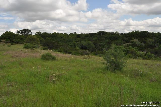 120 Lavaca, Boerne, TX 78006 (MLS #1348915) :: Glover Homes & Land Group