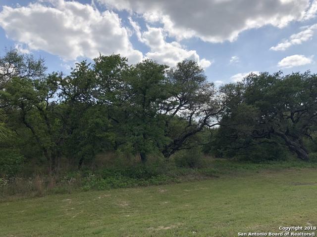 541 Rose Branch Dr, La Vernia, TX 78121 (MLS #1349014) :: NewHomePrograms.com LLC