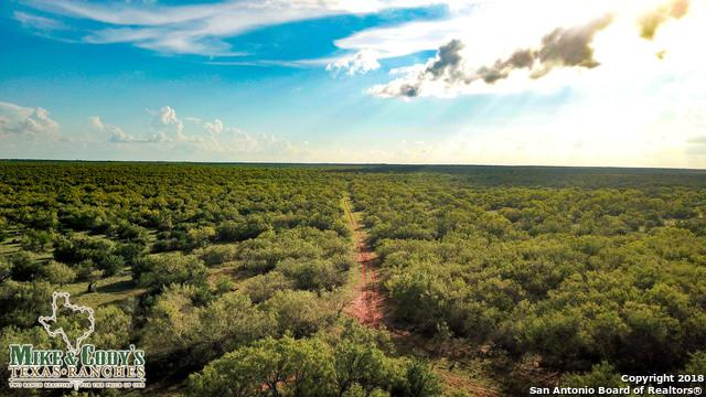 CR 4725 Jack Penn Road, Dilley, TX 78017 (MLS #1349097) :: Neal & Neal Team