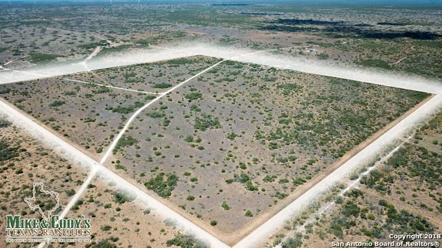 000 La Mota Ranch Rd, HEBBRONVILLE, TX 78361 (MLS #1349104) :: Santos and Sandberg