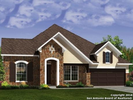 27807 Recanto, San Antonio, TX 78260 (MLS #1349150) :: Exquisite Properties, LLC
