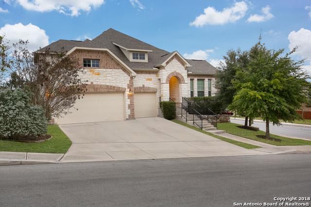 25802 Plumbago, San Antonio, TX 78261 (MLS #1349180) :: Vivid Realty