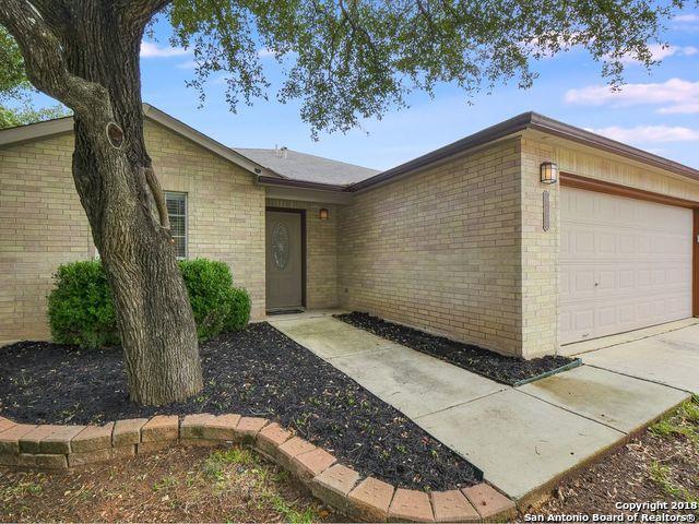 20726 Blue Trinity, San Antonio, TX 78259 (MLS #1349200) :: Alexis Weigand Real Estate Group