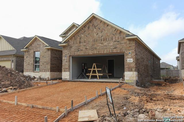 22611 Carriage Bluff, San Antonio, TX 78261 (MLS #1349412) :: The Suzanne Kuntz Real Estate Team