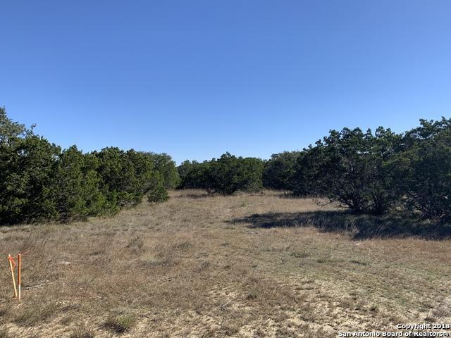 197 Sweet Clover Dr, Spring Branch, TX 78070 (MLS #1349536) :: Exquisite Properties, LLC