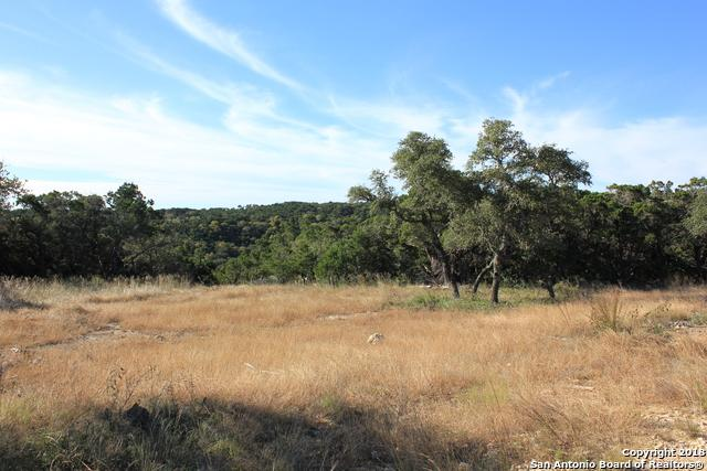 LOT 25 Caprock Ridge, Helotes, TX 78023 (MLS #1349548) :: Alexis Weigand Real Estate Group