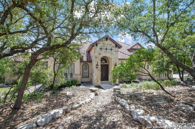 710 Vegas Rio, Helotes, TX 78023 (MLS #1349562) :: Alexis Weigand Real Estate Group