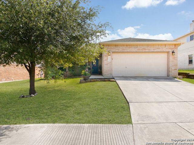 26156 Amber Sky, San Antonio, TX 78260 (MLS #1349805) :: Alexis Weigand Real Estate Group