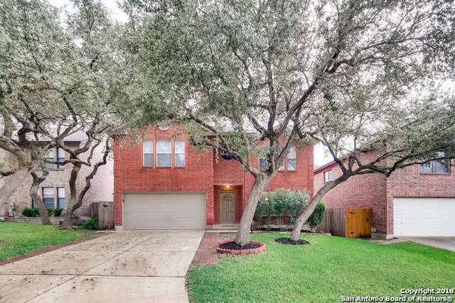 12018 Vintage Pt, San Antonio, TX 78253 (MLS #1349838) :: Alexis Weigand Real Estate Group