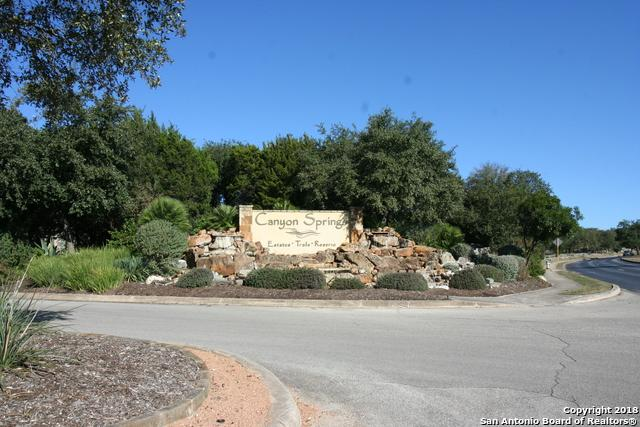 602 Sandtrap Ct, San Antonio, TX 78260 (MLS #1349853) :: The Suzanne Kuntz Real Estate Team