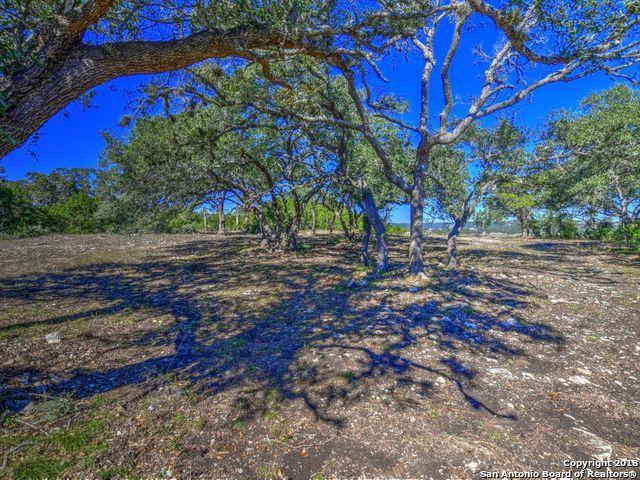 2050 San Jose Way, Canyon Lake, TX 78133 (MLS #1349940) :: Berkshire Hathaway HomeServices Don Johnson, REALTORS®