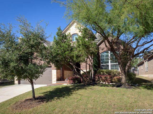 9738 Helotes Hl, Helotes, TX 78023 (MLS #1350087) :: Tom White Group