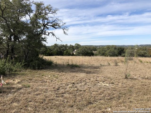 141 Gadwall Way, Spring Branch, TX 78070 (MLS #1350117) :: Tom White Group