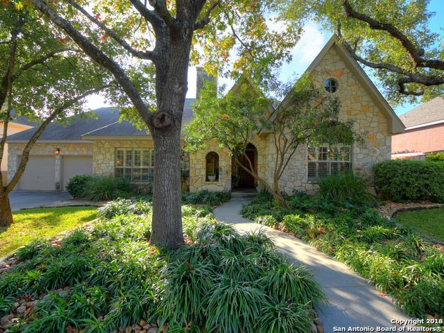 17315 Fountain Bluff Dr, San Antonio, TX 78248 (MLS #1350144) :: Alexis Weigand Real Estate Group