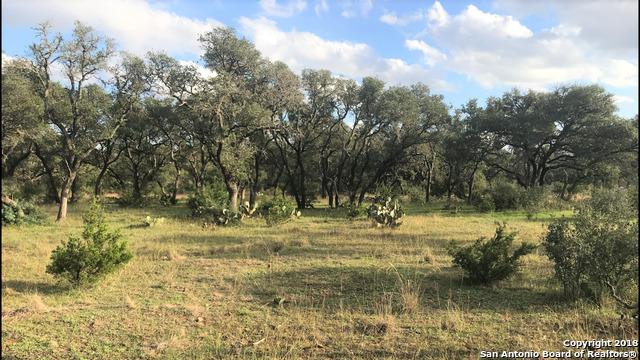 7648 Ranch Road 1323, Fredericksburg, TX 78624 (MLS #1350232) :: Alexis Weigand Real Estate Group