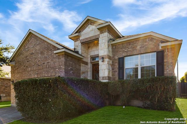 9722 Ed Wiseman Trl, San Antonio, TX 78251 (MLS #1350276) :: Tom White Group