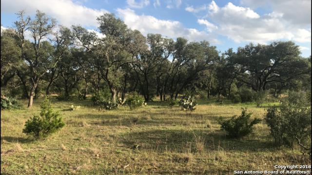 7648 Ranch Road 1323 - Photo 1