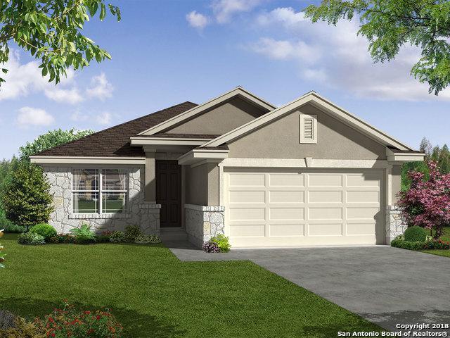 11623 Tribute Oaks, San Antonio, TX 78254 (MLS #1350470) :: Alexis Weigand Real Estate Group