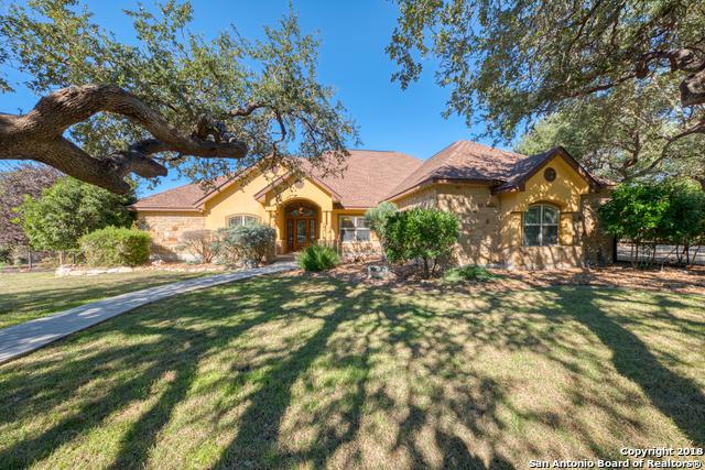 26634 Forest Link, New Braunfels, TX 78132 (MLS #1350538) :: Alexis Weigand Real Estate Group