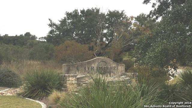 LOT 25 Falcon Pt, Boerne, TX 78006 (MLS #1350577) :: Tom White Group