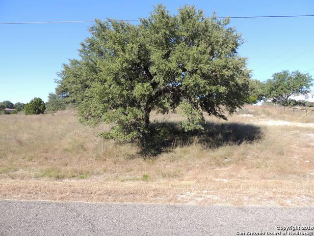 253 Red Rose St, Spring Branch, TX 78070 (MLS #1350583) :: Tom White Group