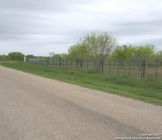 125 Cr 2660, Moore, TX 78057 (MLS #1350594) :: Vivid Realty
