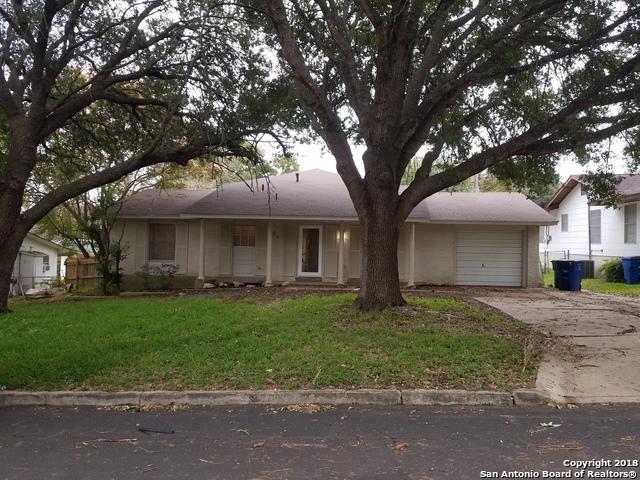 3842 Gayle Ave, San Antonio, TX 78223 (MLS #1350596) :: Tom White Group