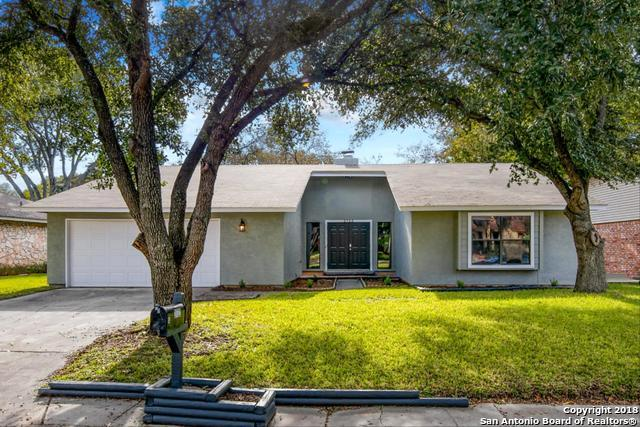 2722 Knoll Tree St, San Antonio, TX 78247 (MLS #1350742) :: Alexis Weigand Real Estate Group