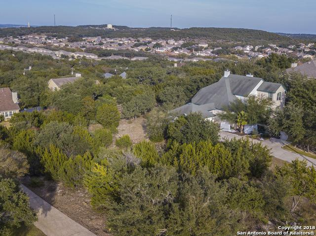 527 Breathless View St, San Antonio, TX 78260 (MLS #1350759) :: The Castillo Group