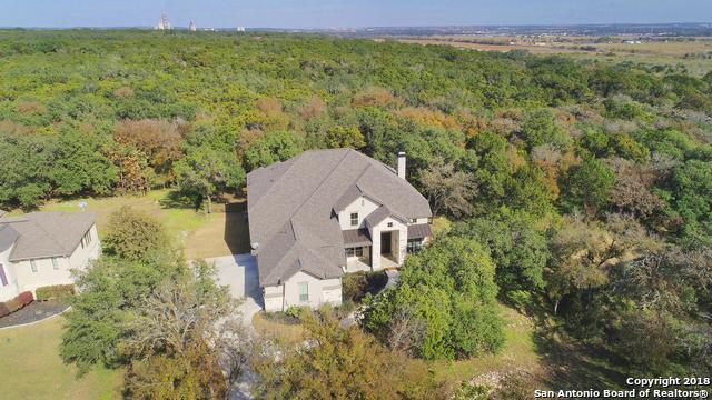 1410 Havenwood Blvd, New Braunfels, TX 78132 (MLS #1350820) :: Alexis Weigand Real Estate Group