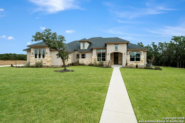 2217 Cascada Pkwy, Spring Branch, TX 78070 (MLS #1350944) :: Alexis Weigand Real Estate Group