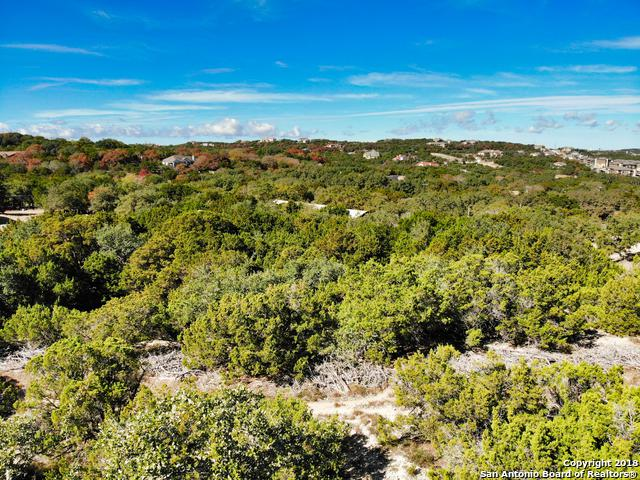 8821 Canyon Crest Dr, Boerne, TX 78006 (MLS #1350961) :: Alexis Weigand Real Estate Group