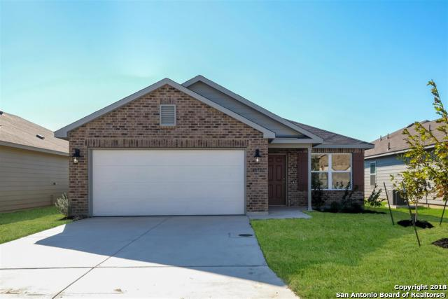 4615 Heathers Cross, St Hedwig, TX 78152 (MLS #1350981) :: Alexis Weigand Real Estate Group