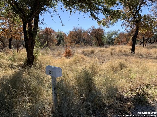 LOT 72 Oak Krest Blvd, Poteet, TX 78065 (MLS #1351190) :: Alexis Weigand Real Estate Group