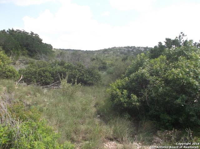 LOT 44 Turkey Draw Dr, Del Rio, TX 78840 (MLS #1351421) :: NewHomePrograms.com LLC